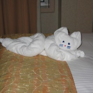Towel Animal Cat