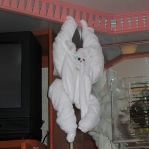 Towel Animal Monkey On The Carnival Glory