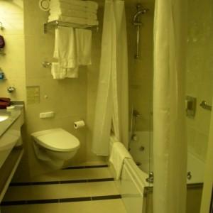 Nieuw Amsterdam SA Bathroom