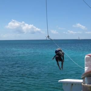 Einstein:  Aruba  Mi Dushi sail & snorkel trip