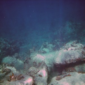 2011_03_09_St_Kitts_Cat_Snorkel_time_6