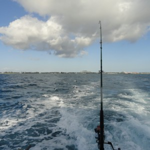 Hooked Up - Heading out to the reef