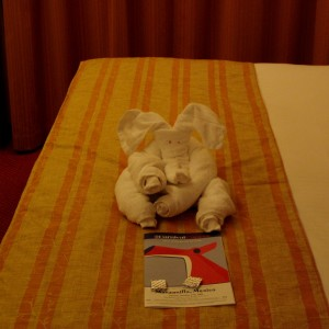Our first towel animal.