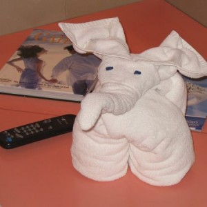 Towel Animal Elephant From Carnival Paradise