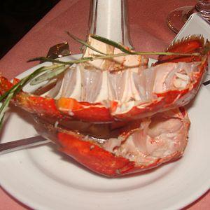 Empty lobster shells